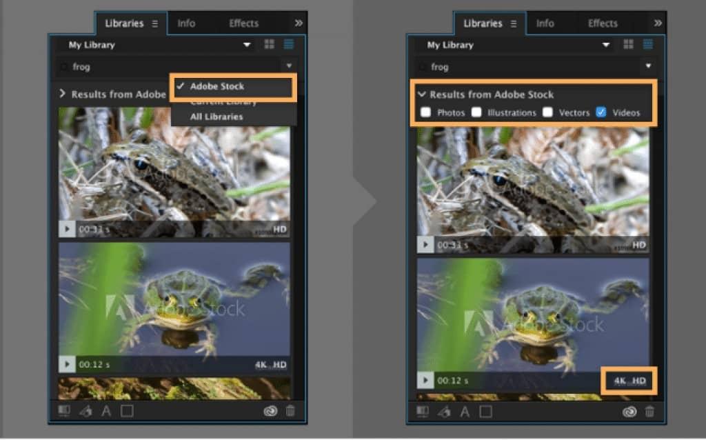 Adobe Stock Video Creative Cloud Screenshot
