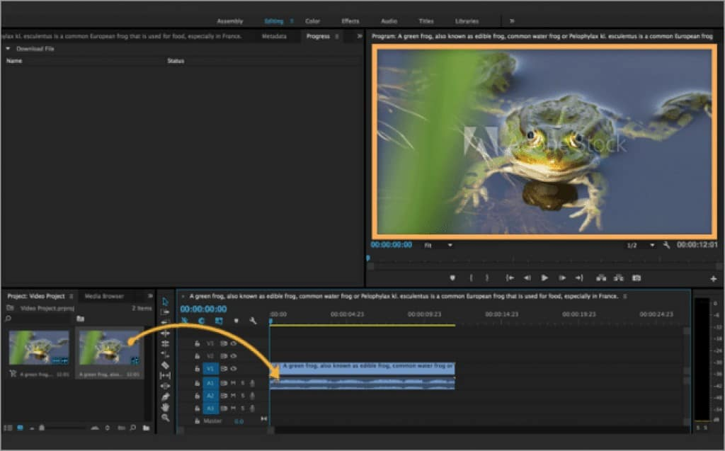 Adobe Stock Video Creative Cloud Screenshot Usage
