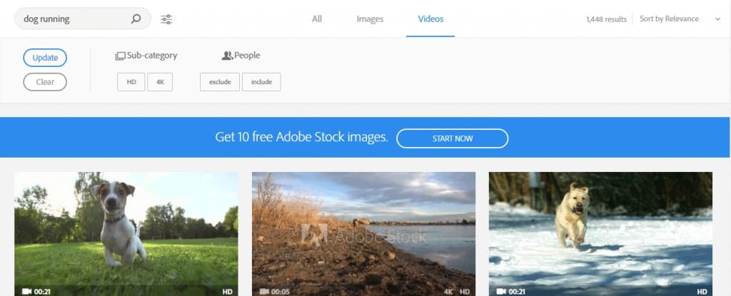 Adobe Stock Video Search Example