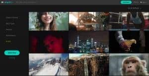 Top 5 Agencies to Buy Royalty Free Cheap Stock Footage 12