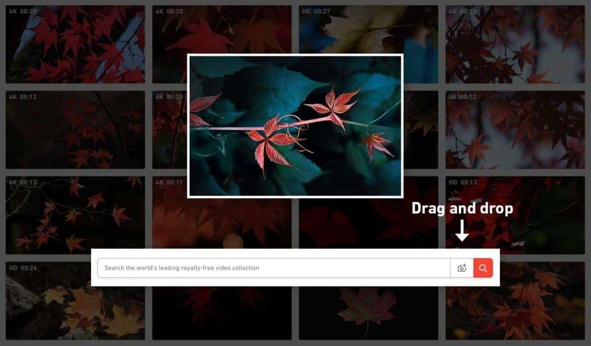 Shutterstock Launches Reverse Search Tool For Video 1