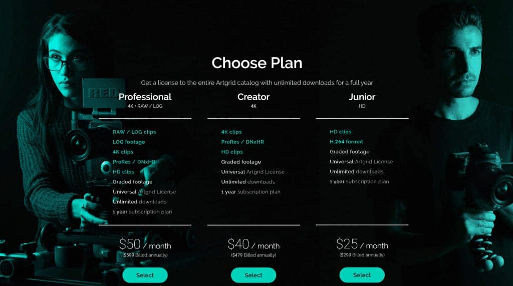 Review Artgrid.io Pricing Options